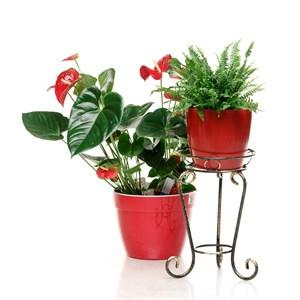 Напольная подставка для цветка